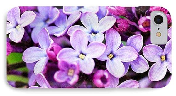 Lilacs IPhone Case by Penni D'Aulerio