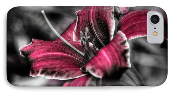 IPhone Case featuring the photograph Lilly 3 by Michaela Preston