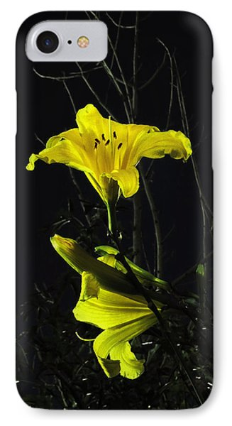 Lilly In The Evening IPhone Case by Charles Ables