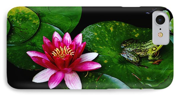 Lily And The Frog IPhone Case by Debbie Oppermann