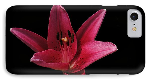 Lily IPhone Case by Eric Liller