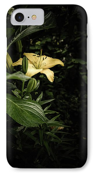 IPhone Case featuring the photograph Lily In The Garden Of Shadows by Marco Oliveira