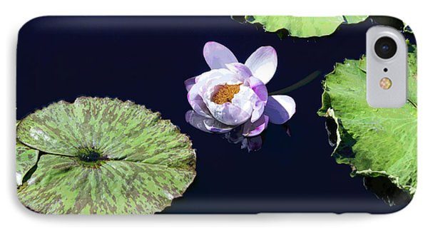 IPhone Case featuring the photograph Lily Love II by Suzanne Gaff
