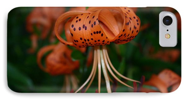 Lily IPhone Case by Martina Fagan