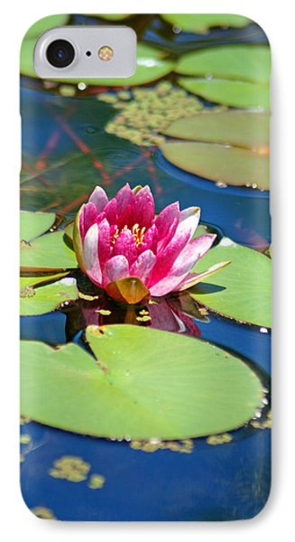 Lily Pond Phone Case by Donna Bentley