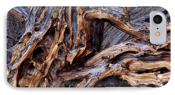 Limber Pine Roots Phone Case by Leland D Howard