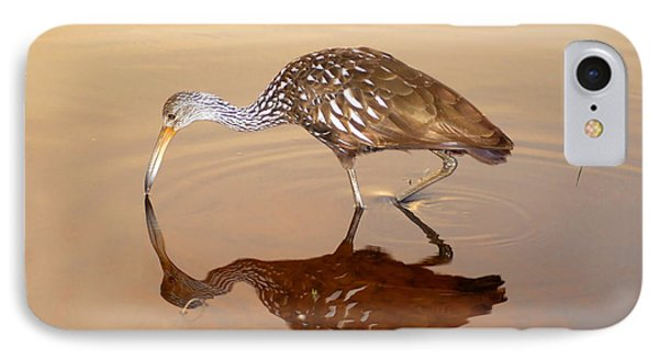 Limpkin In The Mirror Phone Case by David Lee Thompson