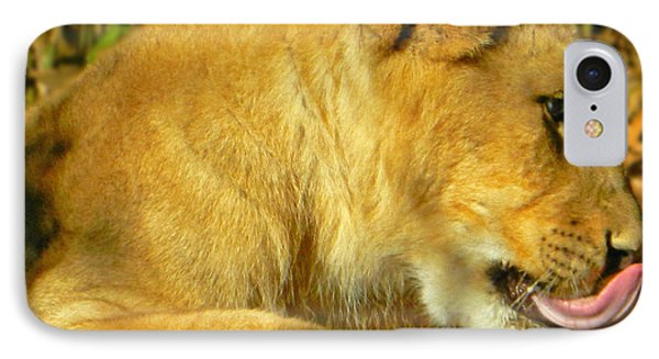 Lion Cub - What A Yummy Snack IPhone Case