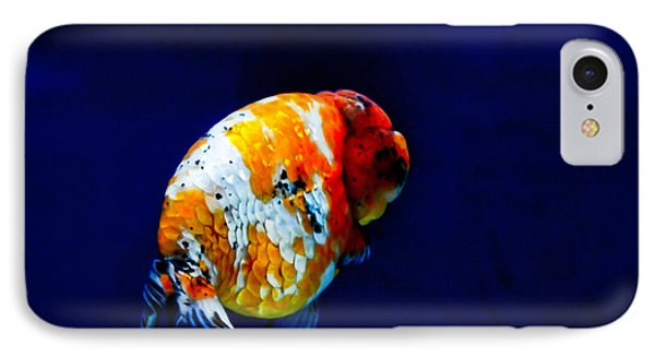 Lion Head Goldfish 2 IPhone Case