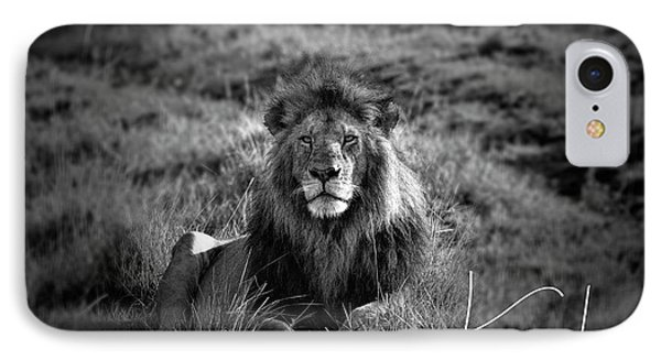 IPhone Case featuring the photograph Lion King by Karen Lewis