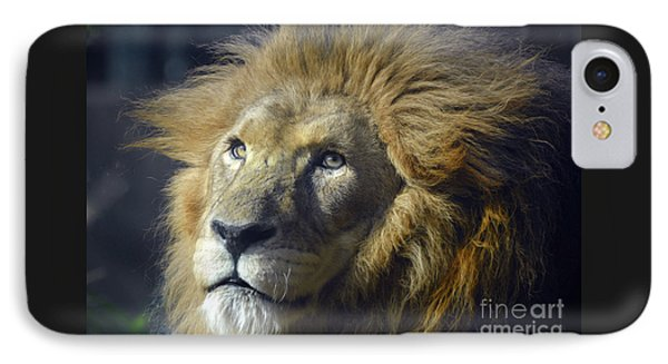 IPhone Case featuring the photograph Lion Portrait by Savannah Gibbs