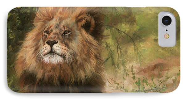 Lion Resting IPhone Case by David Stribbling