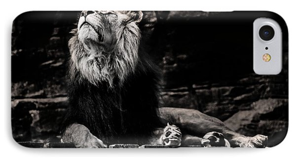 Lion Rock IPhone Case by Martin Newman