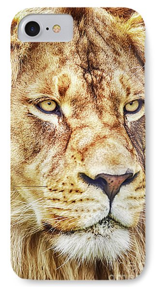Lion-the King Of The Jungle Large Canvas Art, Canvas Print, Large Art, Large Wall Decor, Home Decor IPhone Case