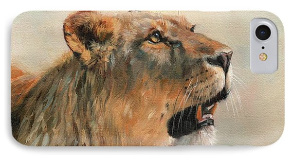Lioness Portrait 2 IPhone Case by David Stribbling