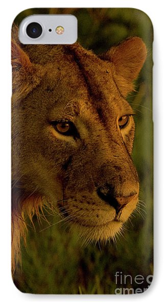 Lioness-signed-#6947 IPhone Case by J L Woody Wooden