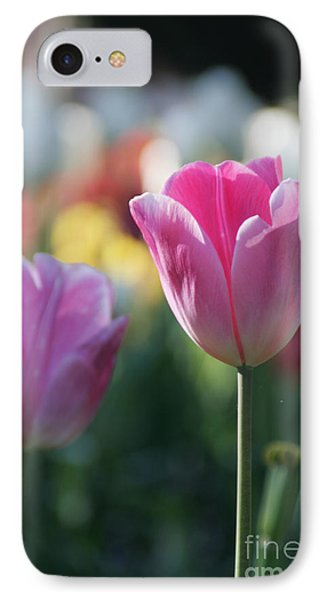Lit Tulip 05 IPhone Case by Andrea Jean
