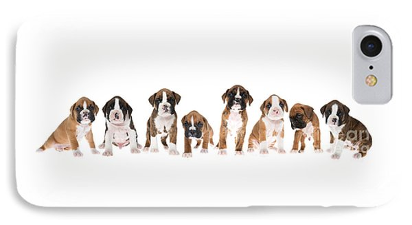 Litter Of Boxer Puppies IPhone Case