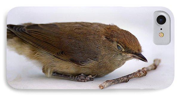 Little Bird  IPhone Case by Pierre Van Dijk
