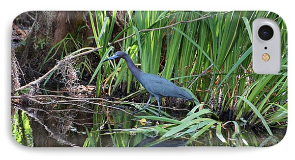 IPhone Case featuring the photograph Little Blue Heron by Sandy Keeton