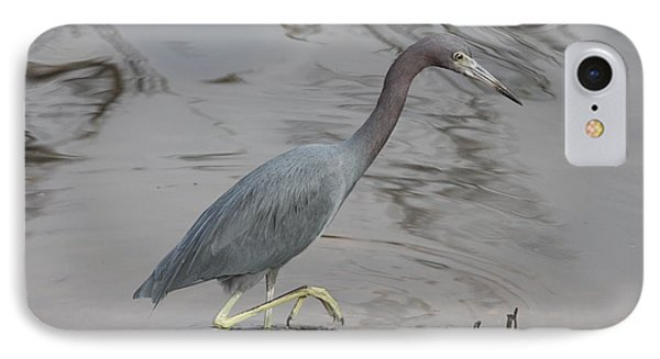 Little Blue Heron Walking IPhone Case by Christiane Schulze Art And Photography