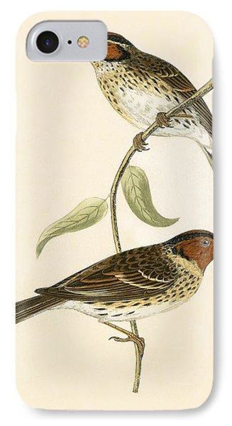 Little Bunting IPhone 7 Case