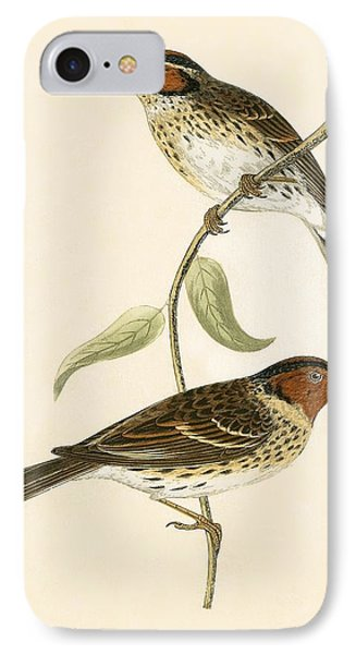 Little Bunting IPhone 7 Case by English School