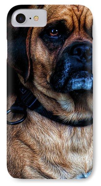 Little Dog Big Heart IPhone Case by Bob Orsillo