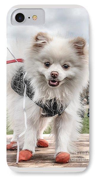 Little Doggie IPhone Case by Edward Fielding