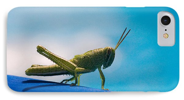 Little Grasshopper Phone Case by Christopher Holmes