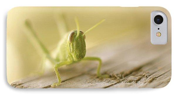 Little Grasshopper IPhone Case by Claudia Ellis