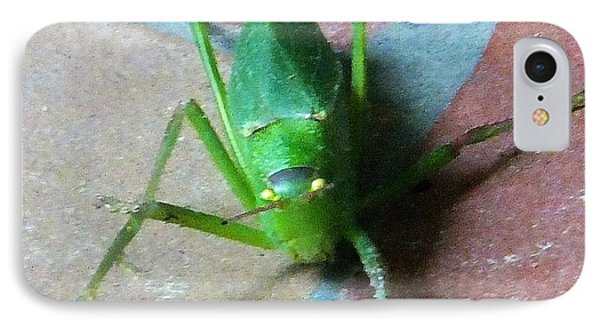 IPhone Case featuring the photograph Little Grasshopper by Denise Fulmer