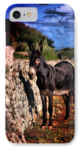 Little Mediterranean Donkey Dream Color With White Eyes And Belly  Hdr By Pedro Cardona Phone Case by Pedro Cardona Llambias