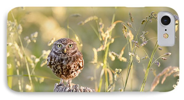 Little Owl Big World IPhone Case by Roeselien Raimond