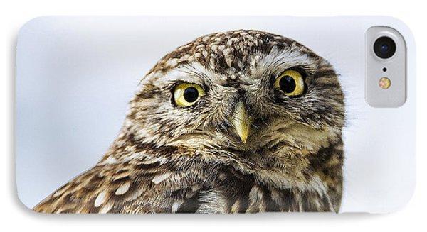 Little Owl  IPhone Case by Paul Neville