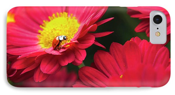 Little Red Ladybug Phone Case by Christina Rollo