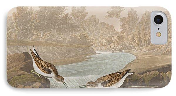 Little Sandpiper IPhone 7 Case by John James Audubon