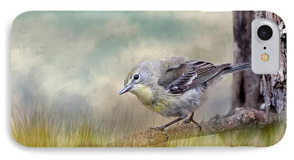 Little Warbler In Louisiana Winter IPhone Case by Bonnie Barry