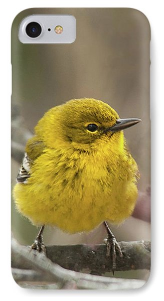 IPhone Case featuring the photograph Little Yellow by Lara Ellis
