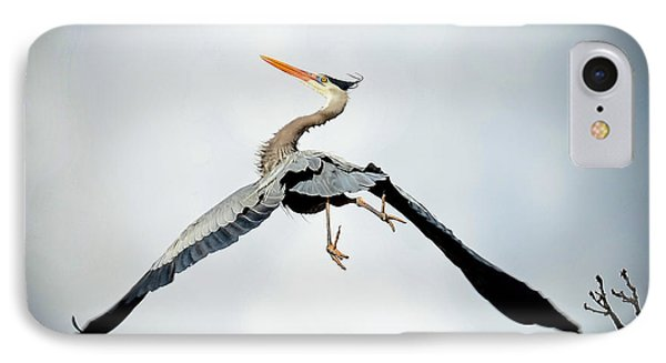 IPhone Case featuring the photograph Live Free And Fly by Rodney Campbell