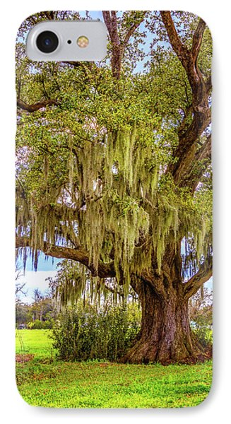 Live Oak And Spanish Moss IPhone Case by Steve Harrington