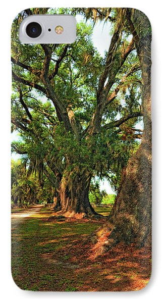 Live Oak Lane Phone Case by Steve Harrington