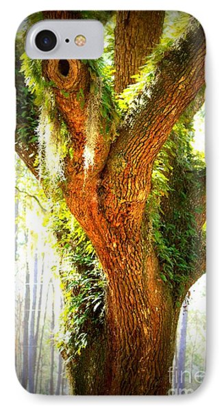 Live Oak With Cypress Beyond Phone Case by Carol Groenen