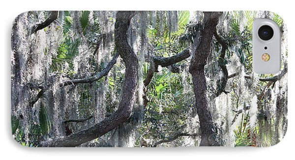 Live Oak With Spanish Moss And Palms Phone Case by Carol Groenen