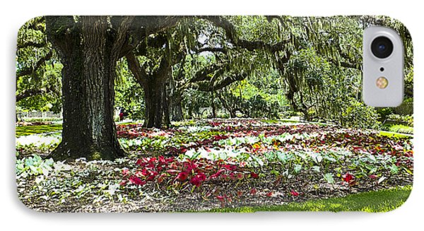 IPhone Case featuring the photograph Live Oaks At Brookgreen Gardens by Bill Barber