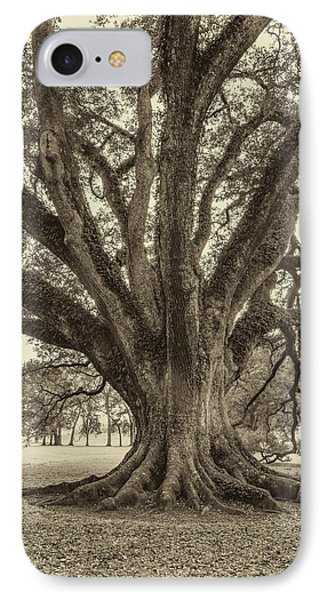 Living History Sepia IPhone Case by Steve Harrington