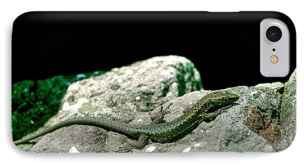 IPhone Case featuring the photograph Lizard by Gouzel -