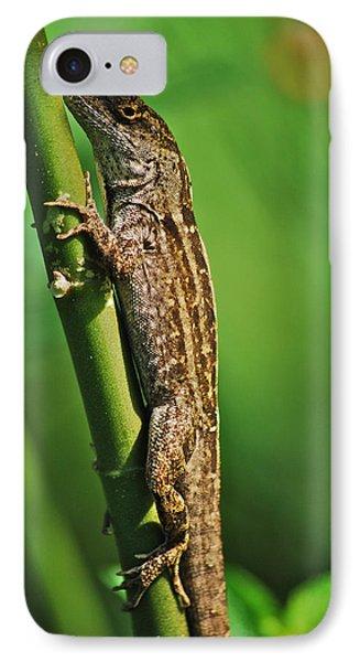 Lizard Phone Case by Michael Peychich