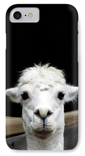 Llama IPhone Case by Lauren Mancke