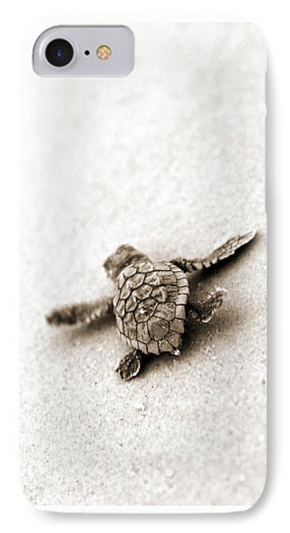 Loggerhead IPhone Case by Michael Stothard